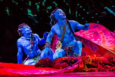 Cirque du Soleil's Toruk - Phoenix, AZ 2016