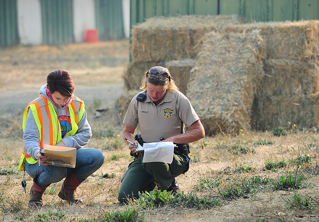 . VALLEJO, CA- OCT. 10, Volunteer coordinator Melissa Hardy goes over the animal count with Animal Control Officer Kristina Bradley at the large animal evacuation center at the Solano County Fairgorunds on Tuesday.    (Chris Riley/Vallejo Times-Herald)