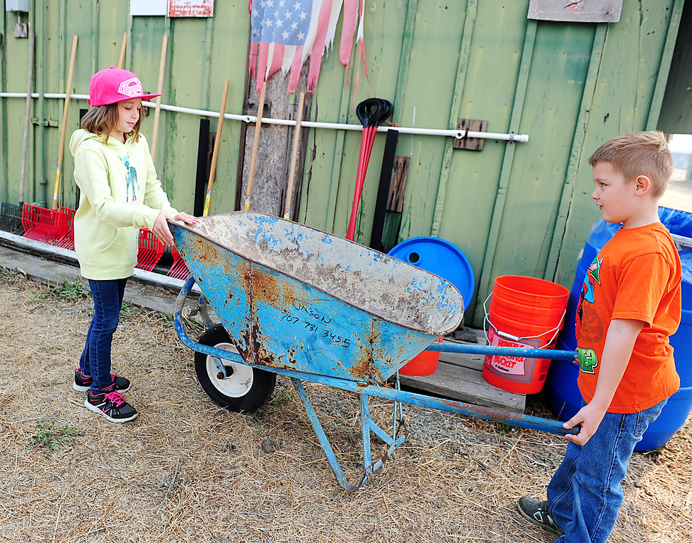 . VALLEJO, CA- OCT. 10, Jude Milliron, 5, and Miley Mau, 6, work to move a wheelbarrow at the large animal evacuation center at the Solano County Fairgorunds on Tuesday. (Chris Riley/Vallejo Times-Herald)