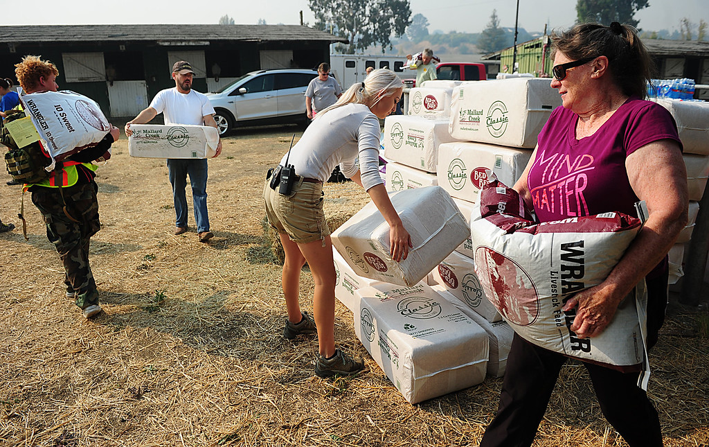 . VALLEJO, CA- OCT. 10, Volunteers carrying in supply donations to the large animal evacuation center at the Solano County Fairgrounds. Nearly 200 animals have been evacuated to the site due to fires in the area.    (Chris Riley/Vallejo Times-Herald)