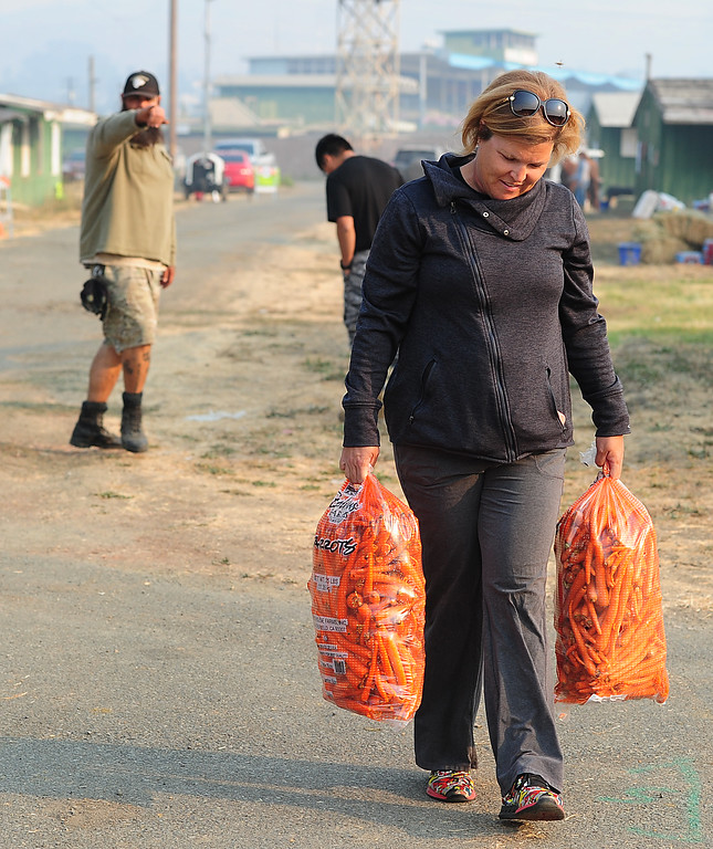 . VALLEJO, CA- OCT. 10, Volunteer Andrea Wilson carries big bags of carrots to donate to the large animal evacuation center at the Solano County Fairgorunds on Tuesday.  (Chris Riley/Vallejo Times-Herald)