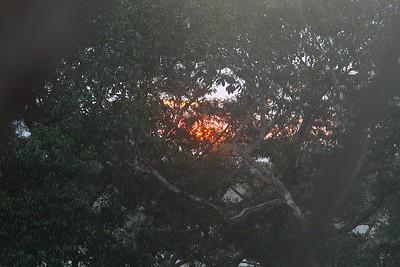16SU4401