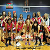 EVANGEL VOLLEY BALL TEAM 2011 : FOR ENHANCED VIEWING CLICK ON THE STYLE ICON AND USE JOURNAL. THANKS FOR BROWSING.