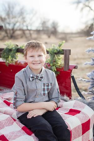 Evans Christmas Mini-15