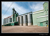 Dunmore, Alberta<br /> August 1, 2014
