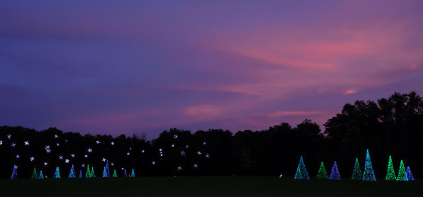 I like the lights against a sunset. I'll have to try to get to the gardens early again.