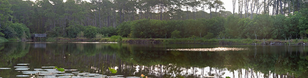 Left side of the pond panorama.