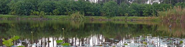 Right side of the pond panorama.