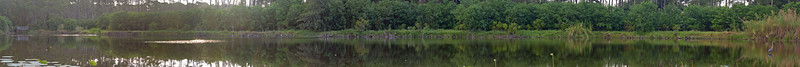 This was an experiment in extreme panorama. It is composed of 18 portrait shots stitched together. Unfortunately, after cropping it turns out to be 5.5 feet X 5.5 inches in its original resolution of 300ppi. Wallpaper border?