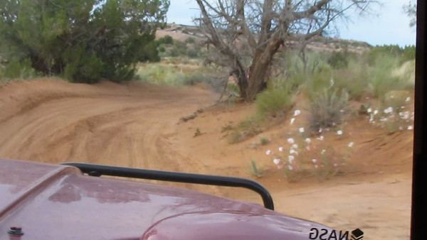 I sure wish I'd been ready with the video option on the camera. I missed the wild part of this. Oh well, maybe next time. NOTE: If you're viewing the Hi Def version (or have a slow connection) hover your cursor over the screen and Pause for a few seconds to let the streaming get ahead of the playback.