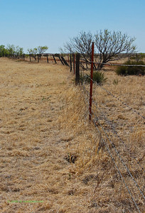 Fields along I-40. An interesting fence.