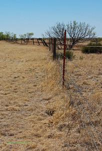 Fields along I-40. An interesting fence.