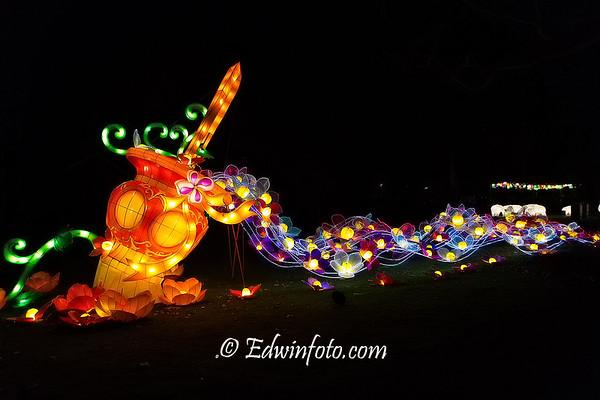 China Light Zoo Antwerp 2015