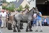 Jaarmarkt Steendorp - 21/08/2010