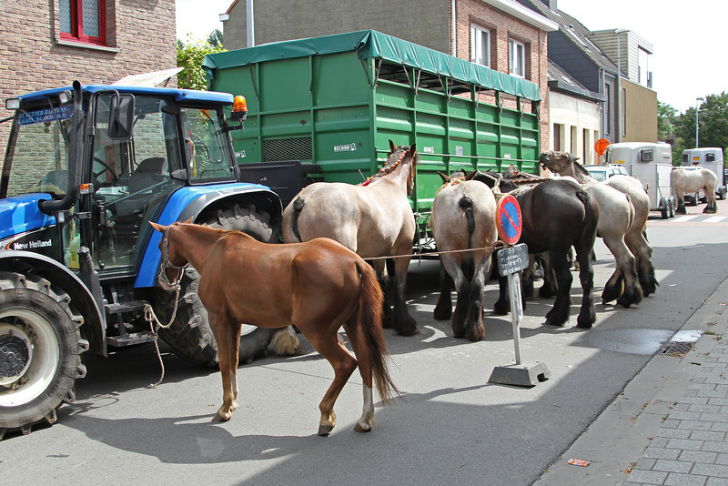 Jaarmarkt Steendorp - 17/08/2013