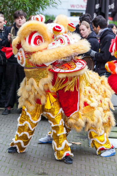 Yellow Chinese Dragon