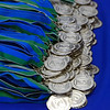 Medallions given to new students at the New Student Convocation Friday, August 19, 2016 at the UWF Field House.