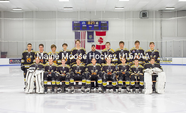 Maine Moose Hockey