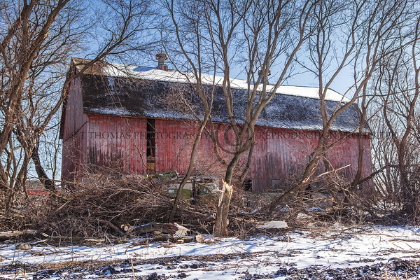 West side Tim and his crew had to clear out trees that surrounded the barn.