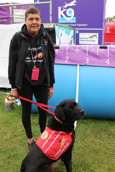 Medical Detection Dogs at the Kent County Show, for Medical Detection Dogs