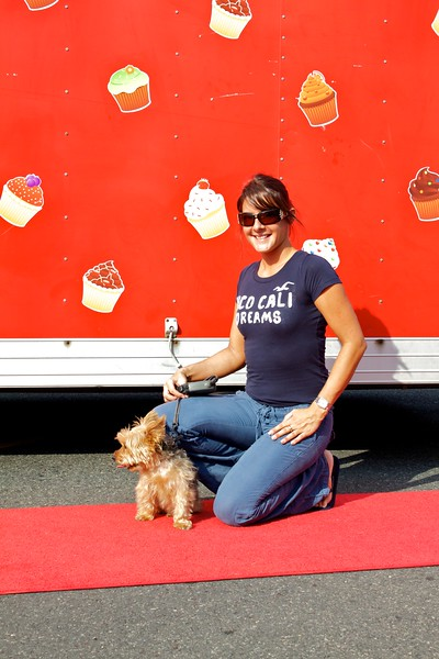 Red Carpet Dogs