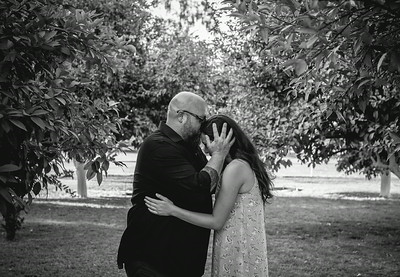 Robinson Wedding Gilbert, AZ - Alysa Bajenaru Photography