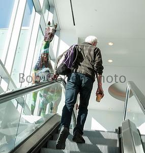 Escalator_Horse_©2014BobCohen