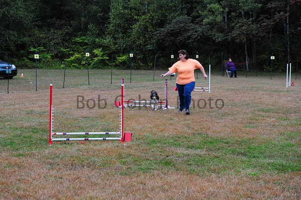 Saturday, September 20, 2014 - Wildcard