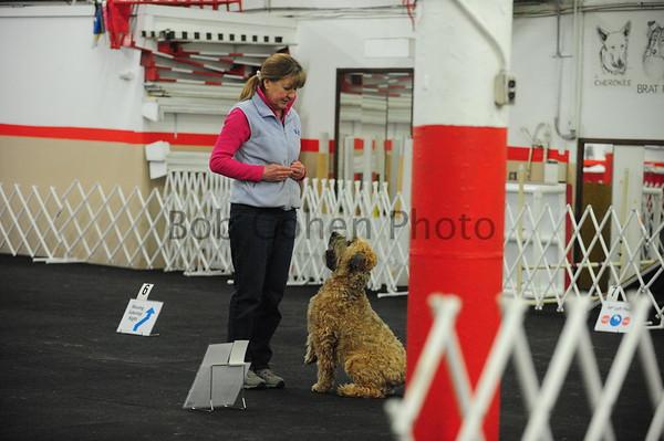 Sunday, April 8, 2018 Dog Rally trials