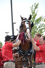 Budweiser Clydesdale Horses at Odawa Casino captured by, photographer, Sandra Lee