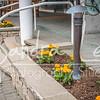 Bay Harbor Flowers - Sandra Lee Photography Studio & Gallery