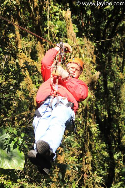 Bill  - Canopy Tour Zip Lines