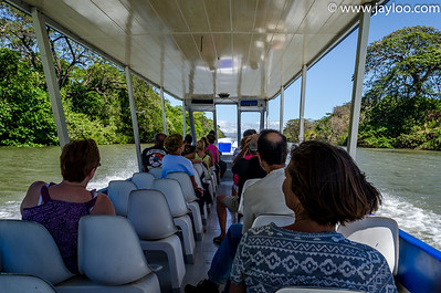 Palo Verde River boat tour in National park of Costa Rica - Province of Guanacaste in Costa Rica