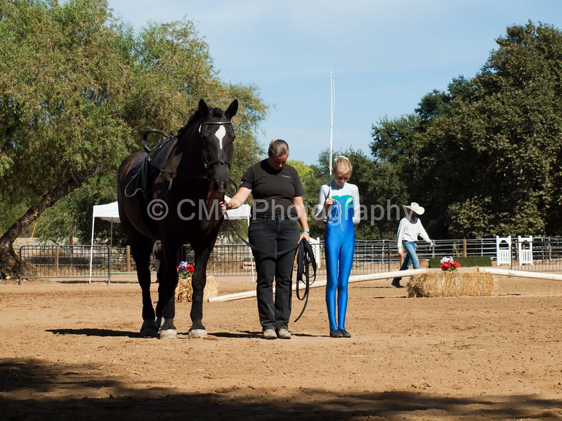 2016_Vaulting_Camelot_(3194_of_3844)