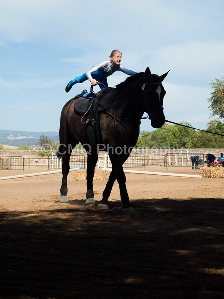 2016_Vaulting_Camelot_(3201_of_3844)