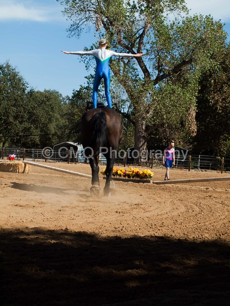 2016_Vaulting_Camelot_(3203_of_3844)