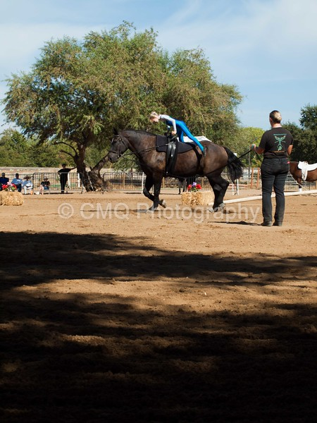 2016_Vaulting_Camelot_(3205_of_3844)
