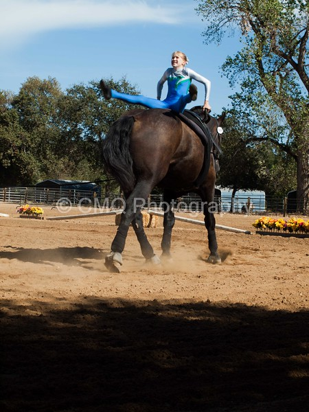 2016_Vaulting_Camelot_(3206_of_3844)