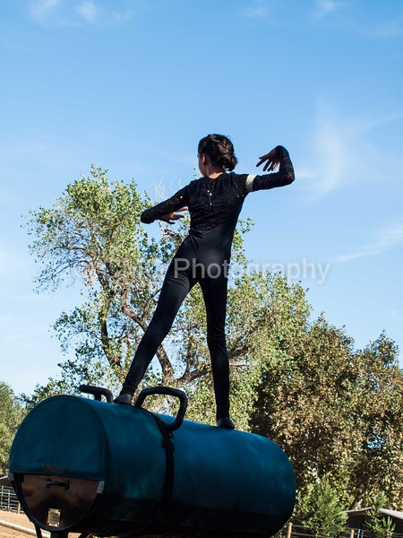 2016_Vaulting_Camelot_(96_of_614)