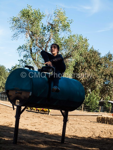 2016_Vaulting_Camelot_(101_of_614)