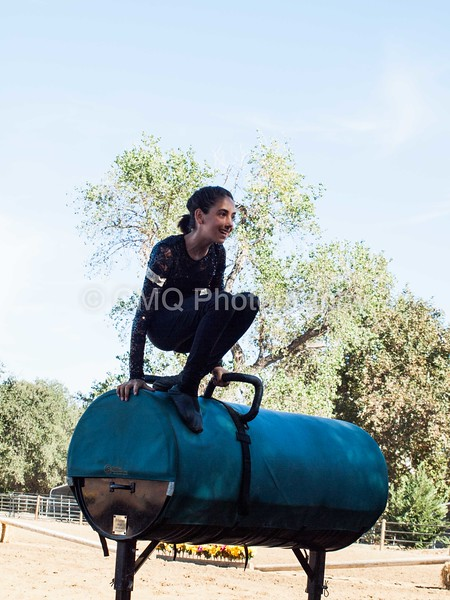 2016_Vaulting_Camelot_(86_of_614)