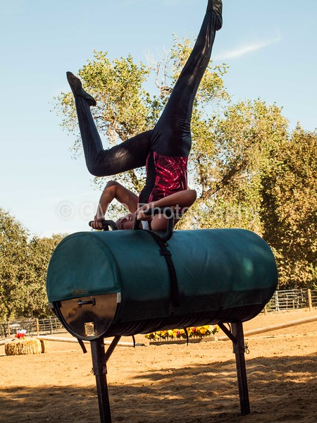 2016_Vaulting_Camelot_(238_of_614)