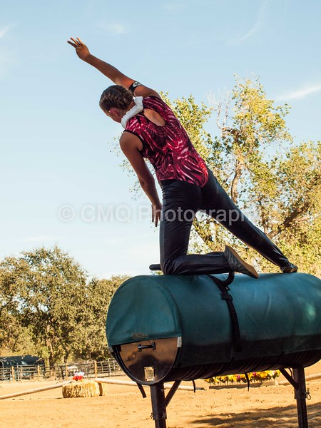 2016_Vaulting_Camelot_(240_of_614)