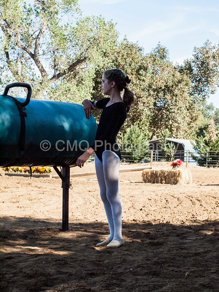 2016_Vaulting_Camelot_(46_of_614)