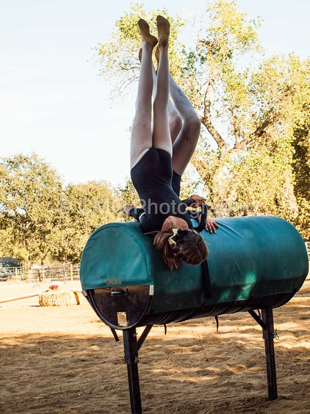 2016_Vaulting_Camelot_(367_of_614)