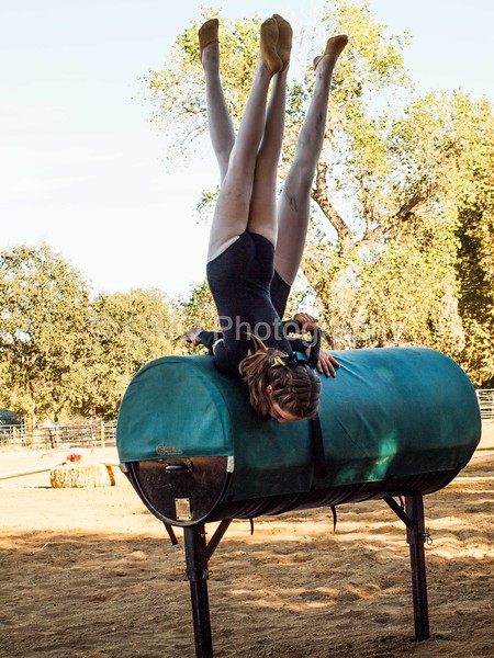 2016_Vaulting_Camelot_(366_of_614)
