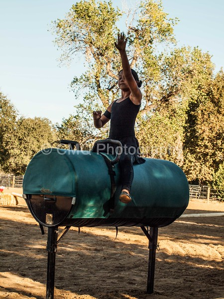 2016_Vaulting_Camelot_(475_of_614)