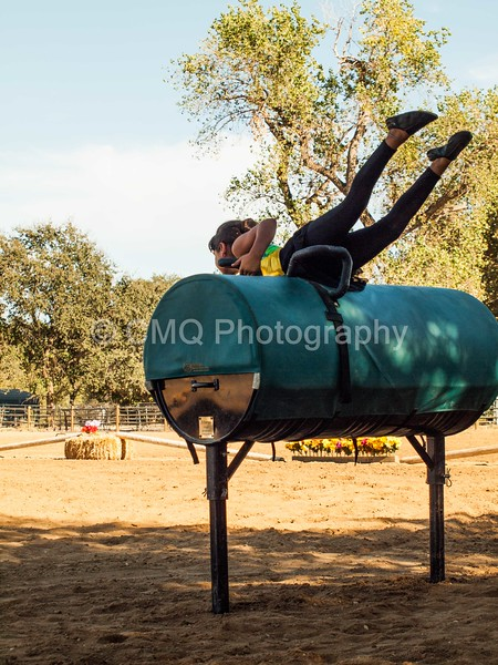 2016_Vaulting_Camelot_(180_of_614)