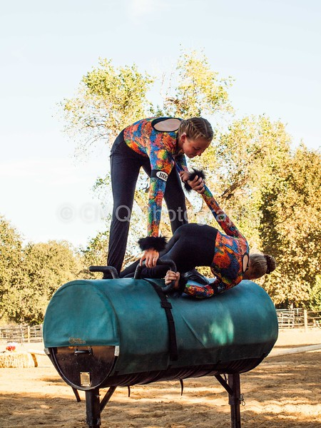 2016_Vaulting_Camelot_(395_of_614)