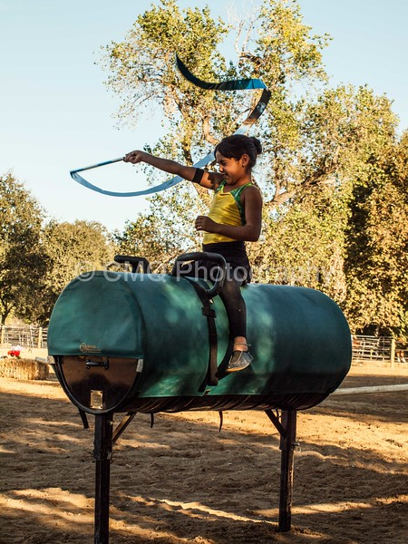 2016_Vaulting_Camelot_(551_of_614)
